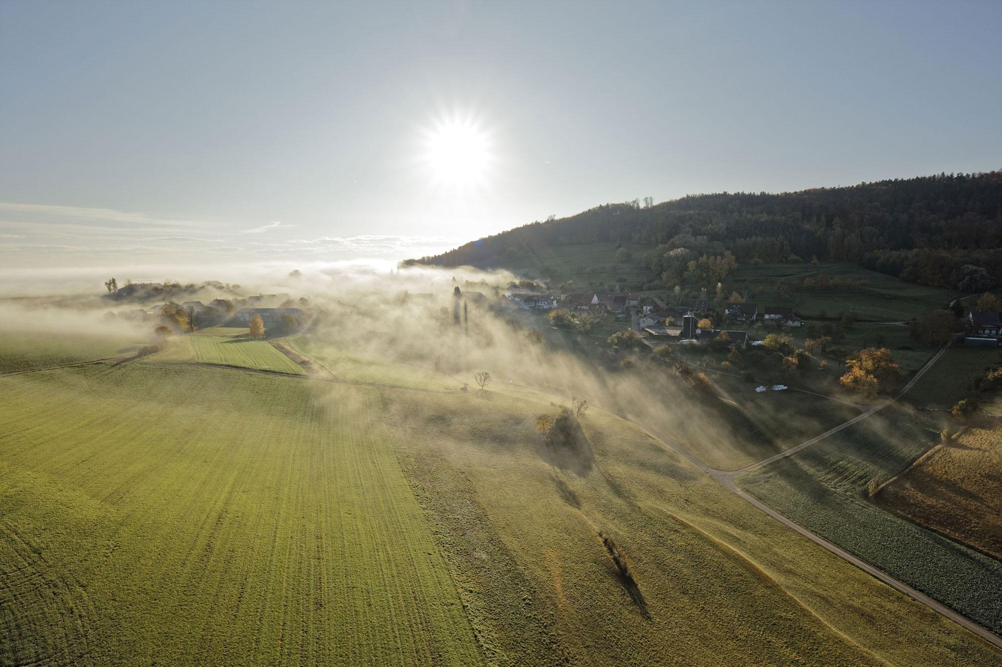 linn aargau